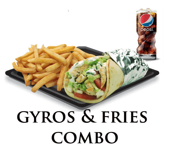Nicks Gyro Combo